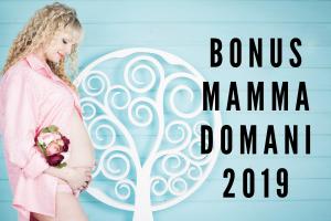 bonus mamma 2019